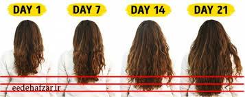 رشد مو